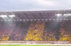 Amazing flag waving display by Dynamo Dresden fans