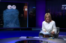 Cookie Monster interviewed on BBC's Newsnight