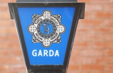 Second man charged over €1 million cannabis plant haul
