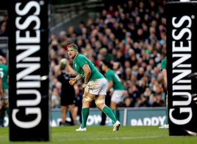Ireland's Jamie Heaslip pictured during the Guinness Series match against New Zealand.