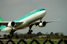 Aer Lingus says it could have done better last year but one thing hurt it