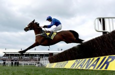 No Gold Cup bid as Cue Card the latest Cheltenham casualty