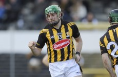Kelly and Hogan goals see Kilkenny home against Galway